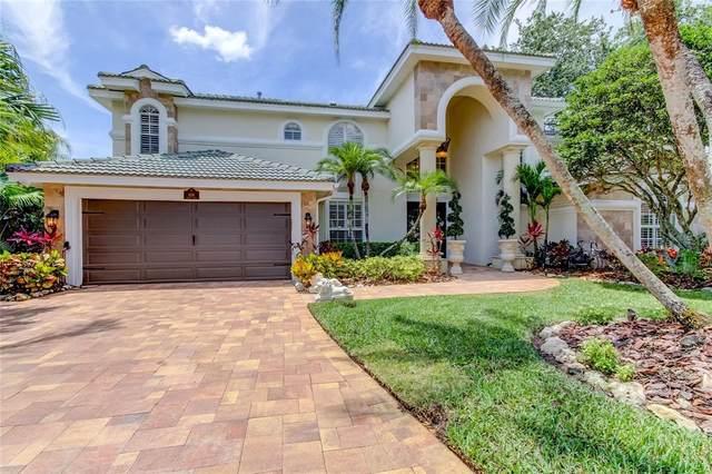 1126 Marina Drive, Tarpon Springs, FL 34689 (MLS #U8124897) :: Rabell Realty Group