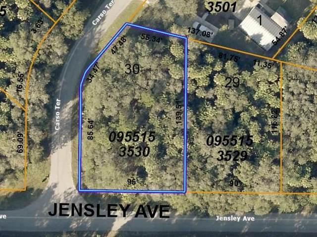 Jensley Avenue, North Port, FL 34286 (MLS #U8124992) :: Your Florida House Team
