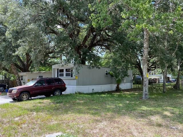 9221 Kiowa Drive, New Port Richey, FL 34654 (MLS #U8125116) :: The Robertson Real Estate Group