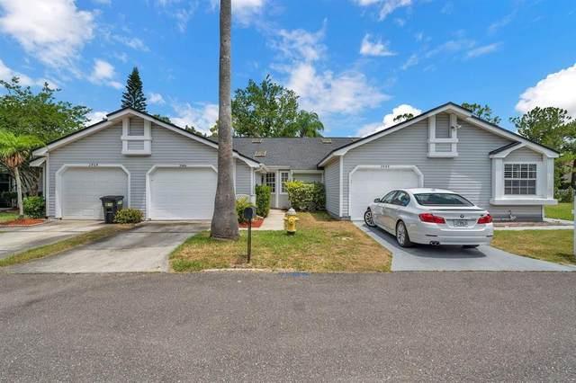 2466 Balboa Court, Clearwater, FL 33761 (MLS #U8125206) :: Expert Advisors Group