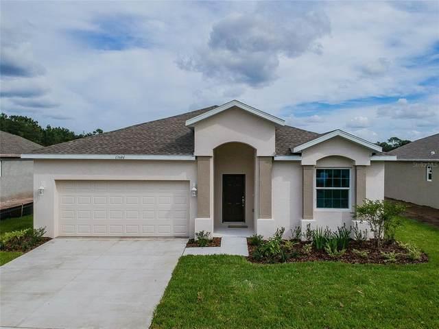 13616 Marilyn Court, Hudson, FL 34669 (MLS #U8125261) :: Vacasa Real Estate