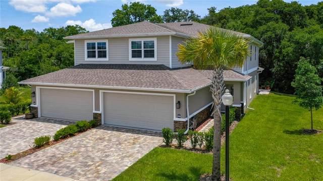 5330 Riverwalk Preserve Drive, New Port Richey, FL 34653 (MLS #U8125273) :: Frankenstein Home Team