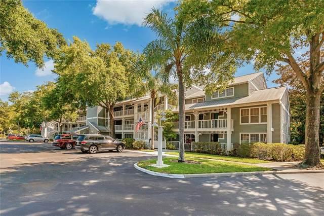2599 Dolly Bay Drive #206, Palm Harbor, FL 34684 (MLS #U8125279) :: Delgado Home Team at Keller Williams