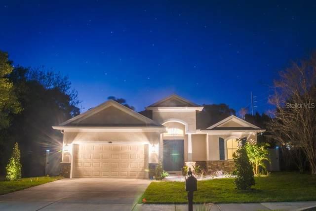5745 River Bluff Drive, New Port Richey, FL 34652 (MLS #U8125330) :: The Hustle and Heart Group