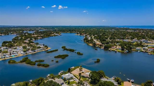 954 Bayshore Drive, Tarpon Springs, FL 34689 (MLS #U8125332) :: Armel Real Estate