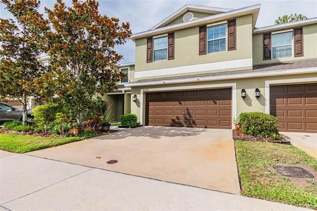 20229 Indian Rosewood Drive, Tampa, FL 33647 (MLS #U8125461) :: Expert Advisors Group