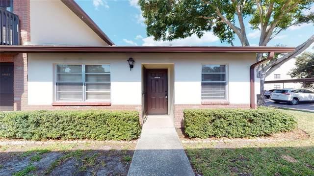 2442 Enterprise Road #4, Clearwater, FL 33763 (MLS #U8125494) :: Frankenstein Home Team