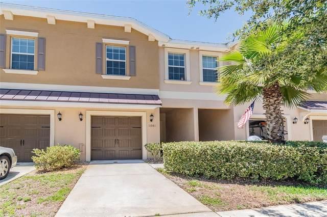 11981 Greengate Drive, Hudson, FL 34669 (MLS #U8125515) :: Vacasa Real Estate
