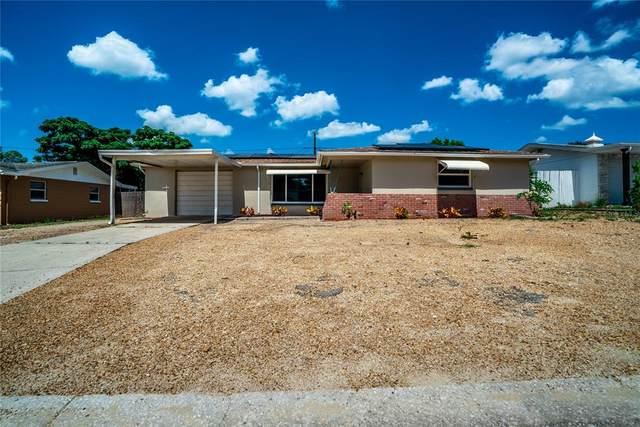 3631 Kimberly Oaks Drive, Holiday, FL 34691 (MLS #U8125609) :: Everlane Realty