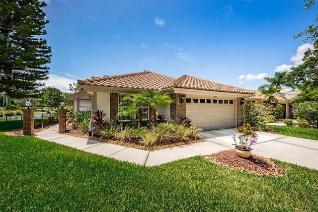 1473 Riverdale Drive, Oldsmar, FL 34677 (MLS #U8125708) :: Everlane Realty
