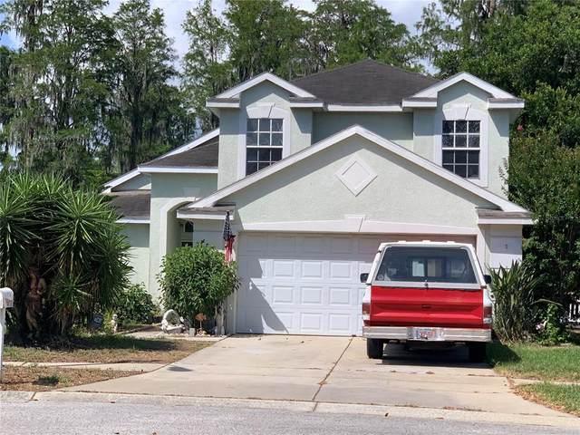 4730 Wolfram Lane, New Port Richey, FL 34653 (MLS #U8125820) :: The Hustle and Heart Group