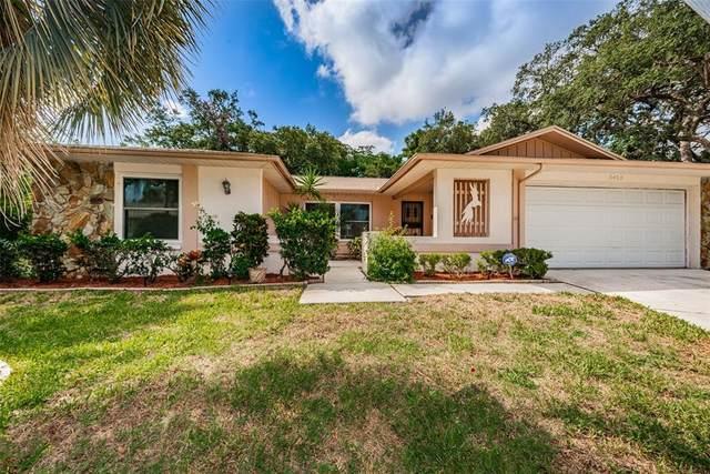 3405 Dove Hollow Court, Palm Harbor, FL 34683 (MLS #U8125822) :: Aybar Homes