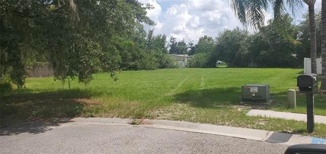 4907 King Lake Drive, Land O Lakes, FL 34639 (MLS #U8125869) :: Zarghami Group