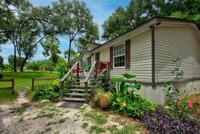 17438 Lawless Road, Spring Hill, FL 34610 (MLS #U8125904) :: Everlane Realty
