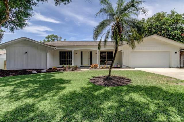 770 Village Way, Palm Harbor, FL 34683 (MLS #U8125912) :: The Duncan Duo Team