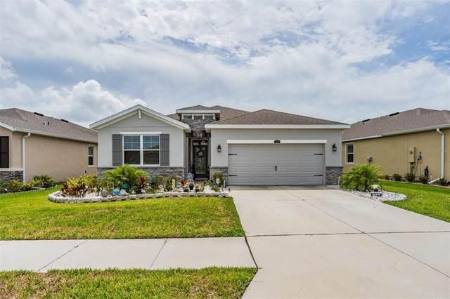 1140 Pipestone Place, Wesley Chapel, FL 33543 (MLS #U8125951) :: Delgado Home Team at Keller Williams