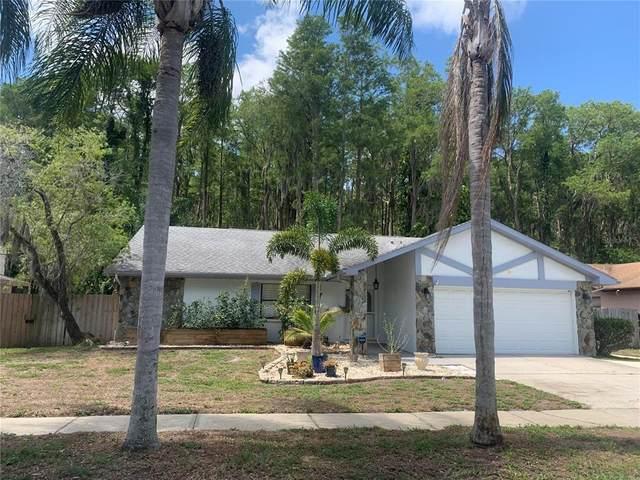 2184 Colonial Boulevard W, Palm Harbor, FL 34683 (MLS #U8126099) :: Godwin Realty Group