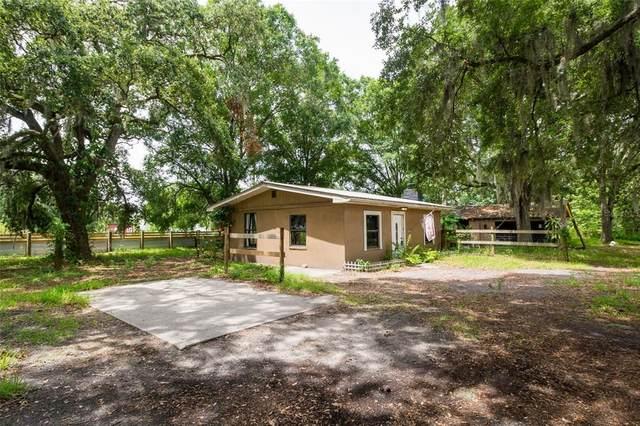 121 S Wiggins Road, Plant City, FL 33566 (MLS #U8126112) :: Your Florida House Team