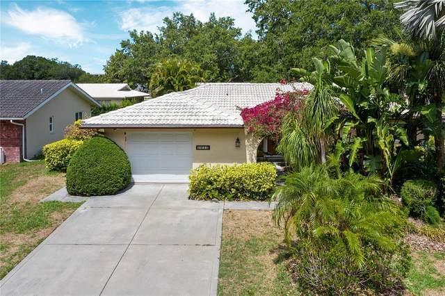 1615 E Dorchester Drive, Palm Harbor, FL 34684 (MLS #U8126243) :: The Lersch Group