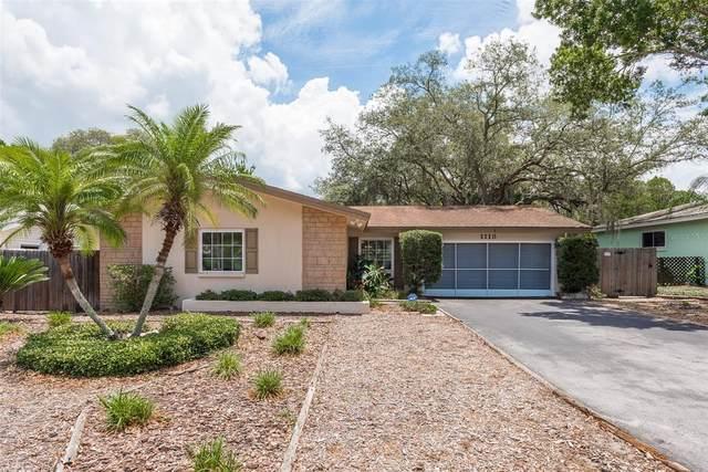 1113 Gulf Oaks Drive, Tarpon Springs, FL 34689 (MLS #U8126261) :: RE/MAX LEGACY