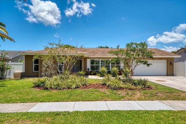 2039 Kingfisher Drive, Palm Harbor, FL 34683 (MLS #U8126299) :: Aybar Homes