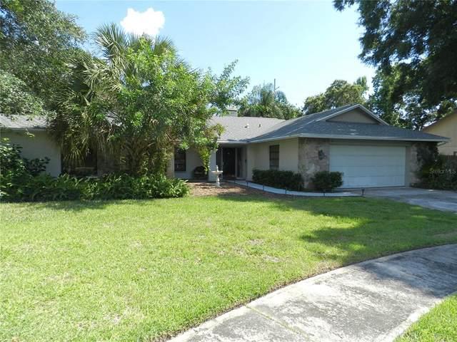 2900 Bridlewood Drive, Palm Harbor, FL 34683 (MLS #U8126330) :: Delgado Home Team at Keller Williams