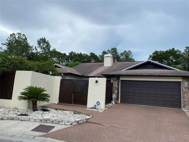 5018 Paloma Drive, Tampa, FL 33624 (MLS #U8126362) :: Everlane Realty