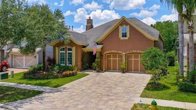 11517 Meridian Point Drive, Tampa, FL 33626 (MLS #U8126392) :: Cartwright Realty