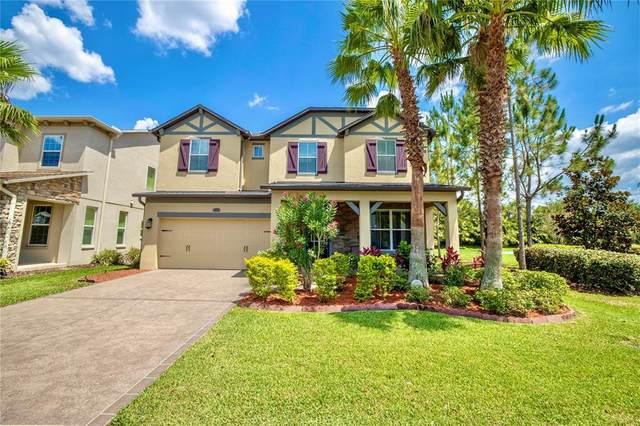 4348 Vermillion Sky Drive, Wesley Chapel, FL 33544 (MLS #U8126423) :: Everlane Realty