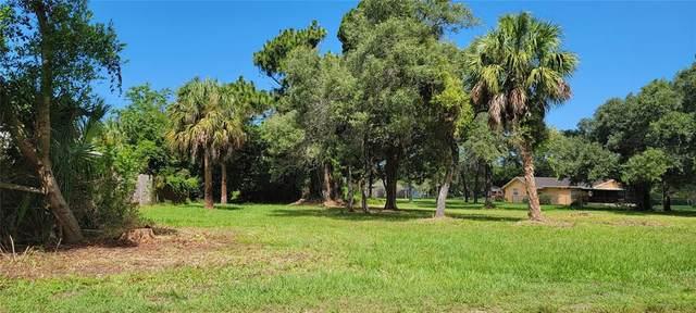 73 Sea Pines Drive, Hudson, FL 34667 (MLS #U8126578) :: Armel Real Estate