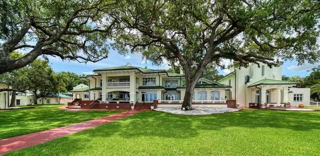 802 Druid Road S, Clearwater, FL 33756 (MLS #U8126598) :: Sarasota Gulf Coast Realtors