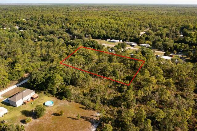 19036 Pake Road, Weeki Wachee, FL 34614 (MLS #U8126641) :: The Robertson Real Estate Group