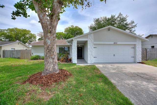 2612 Ochatilla Road, Holiday, FL 34691 (MLS #U8126688) :: Everlane Realty