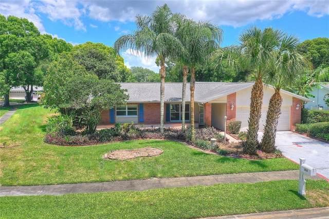 2810 Doone Circle, Palm Harbor, FL 34684 (MLS #U8126728) :: Aybar Homes