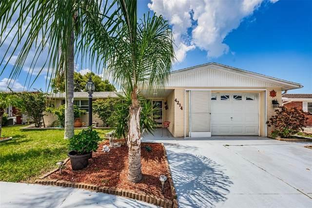 4224 Sunray Drive, Holiday, FL 34691 (MLS #U8126730) :: Rabell Realty Group