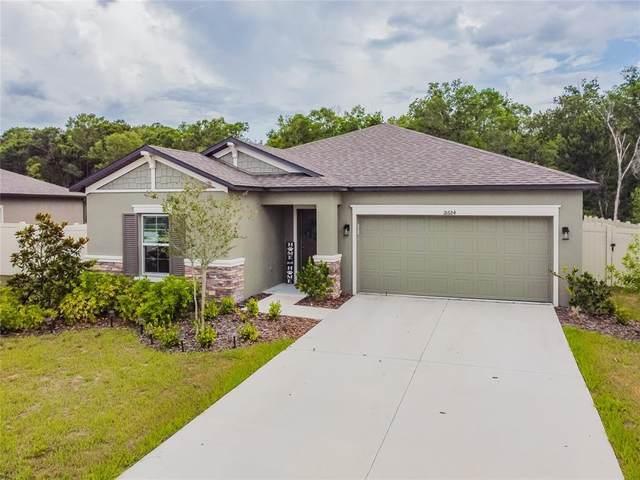 18684 Alfaro Loop, Spring Hill, FL 34610 (MLS #U8126745) :: Dalton Wade Real Estate Group