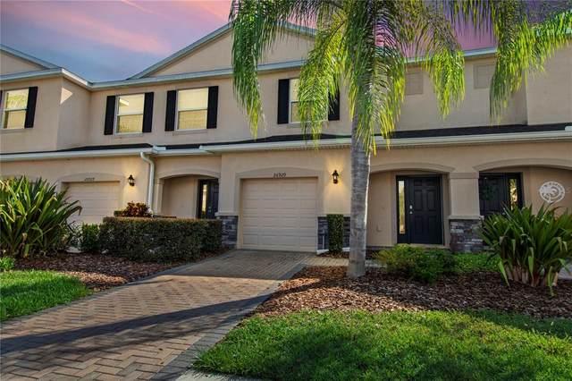 26929 Juniper Bay Drive, Wesley Chapel, FL 33544 (MLS #U8126758) :: BuySellLiveFlorida.com