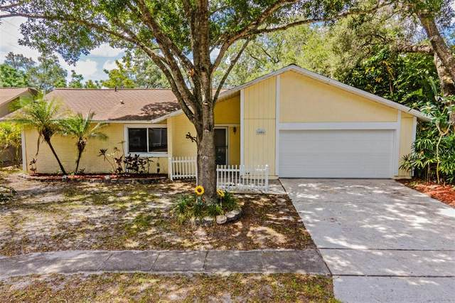1486 Caird Way, Palm Harbor, FL 34683 (MLS #U8126776) :: The Duncan Duo Team