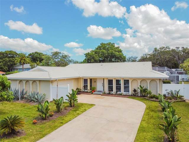 2390 Roberta Lane, Clearwater, FL 33764 (MLS #U8126779) :: Delgado Home Team at Keller Williams