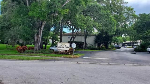 3040 Eastland Boulevard G106, Clearwater, FL 33761 (MLS #U8126785) :: Baird Realty Group