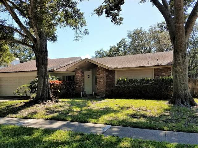 2576 Frisco Drive, Clearwater, FL 33761 (MLS #U8126788) :: Baird Realty Group