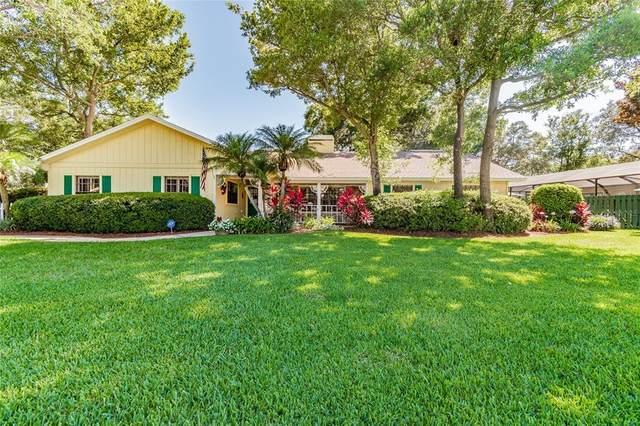 2548 Deer Run E, Clearwater, FL 33761 (MLS #U8126789) :: Baird Realty Group