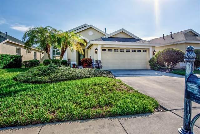 10331 Sorenstam Drive, Trinity, FL 34655 (MLS #U8126810) :: Pepine Realty