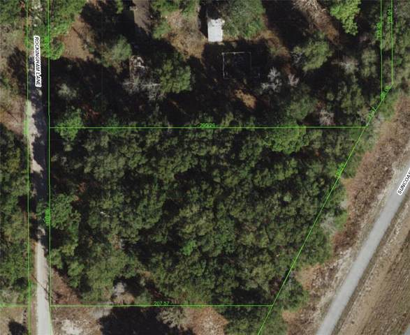 15574 Rockingham Lane, Spring Hill, FL 34610 (MLS #U8126865) :: Pepine Realty