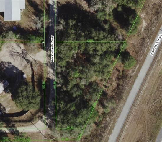 15510 Rockingham Lane, Spring Hill, FL 34610 (MLS #U8126866) :: Pepine Realty