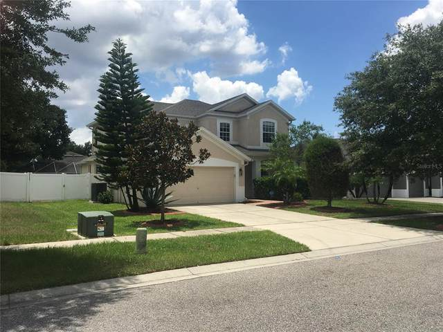 2045 Heartland Circle, Valrico, FL 33594 (MLS #U8126877) :: Burwell Real Estate