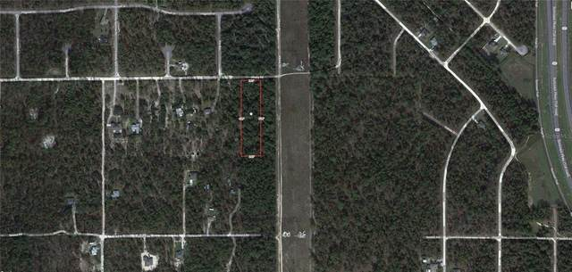 13394 Albany Road, Weeki Wachee, FL 34614 (MLS #U8126881) :: Bustamante Real Estate