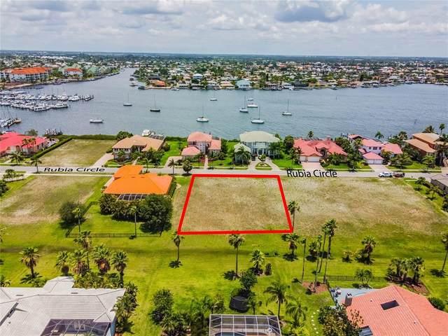 6436 Rubia Circle, Apollo Beach, FL 33572 (MLS #U8126886) :: Team Bohannon