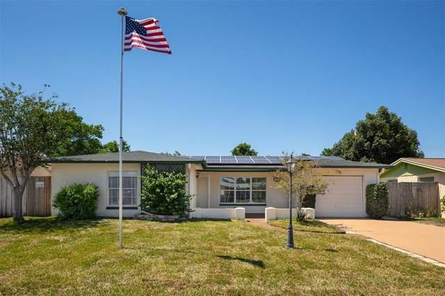 7501 Cumber Drive, New Port Richey, FL 34653 (MLS #U8126892) :: BuySellLiveFlorida.com