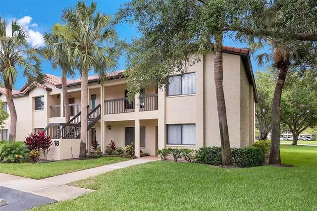 1801 E Lake Road 18H, Palm Harbor, FL 34685 (MLS #U8126897) :: Godwin Realty Group